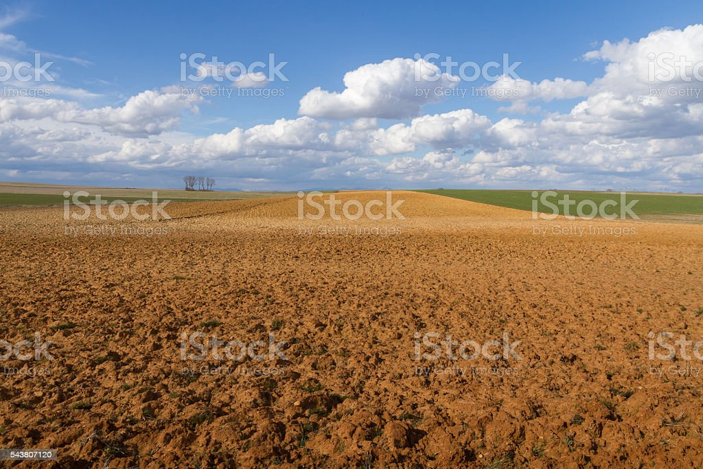 Landscape with Fallows and Crop - Paisaje con Barbechos stock photo
