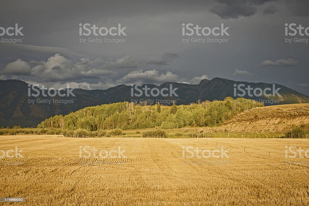 Landscape with Fields by Rd 89 Wyoming USA royalty-free stock photo