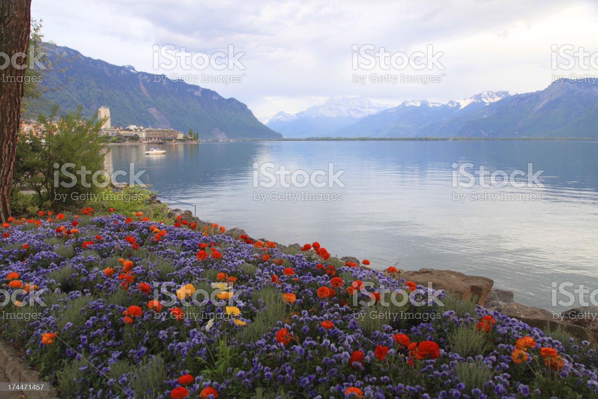landscape with flowers and Lake Geneva, Montreux, Switzerland. royalty-free stock photo