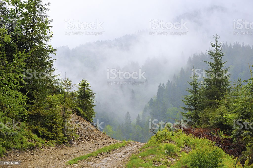 Landscape with fog in mountains stock photo