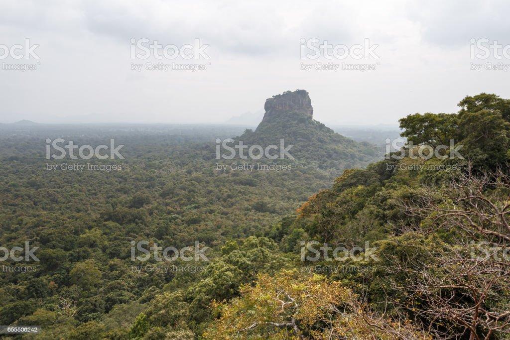 Landscape with fortress of Sigiriya. stock photo