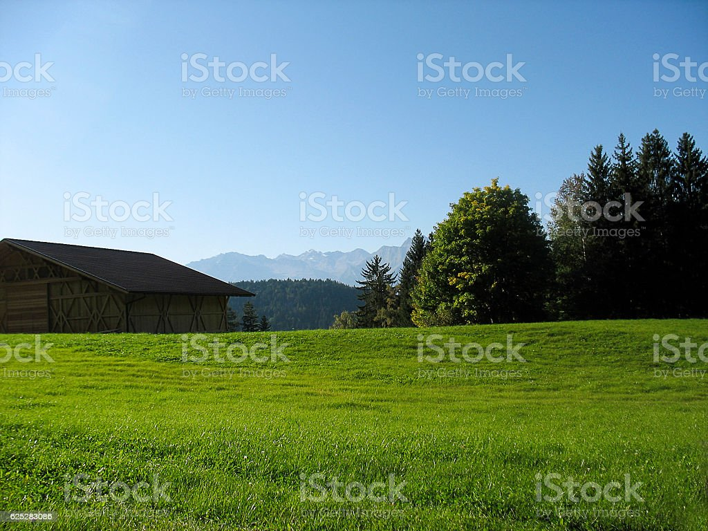 Landscape with green grass and Dolomits in South Tyrol, Italy. stock photo