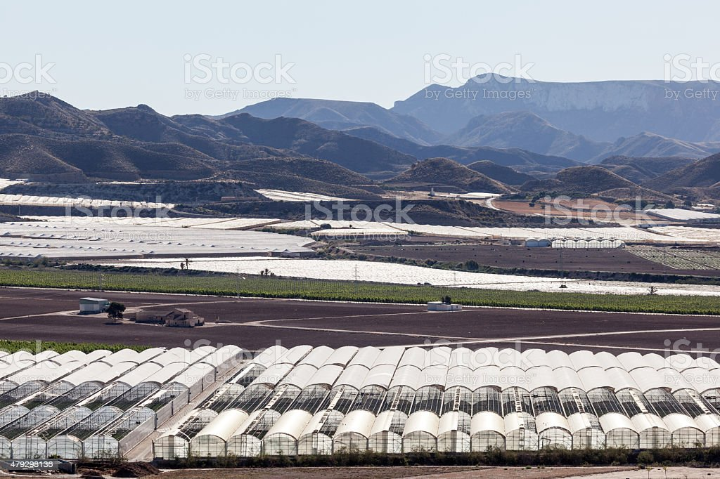 Landscape with greenhouse plantations stock photo