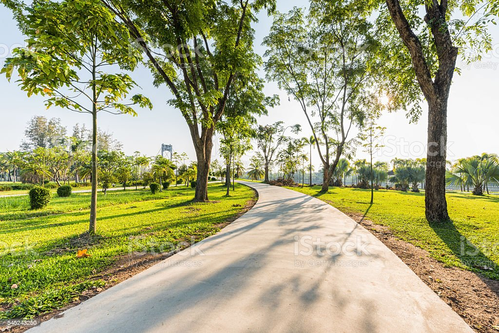 Landscape with jogging track at green park and no people stock photo