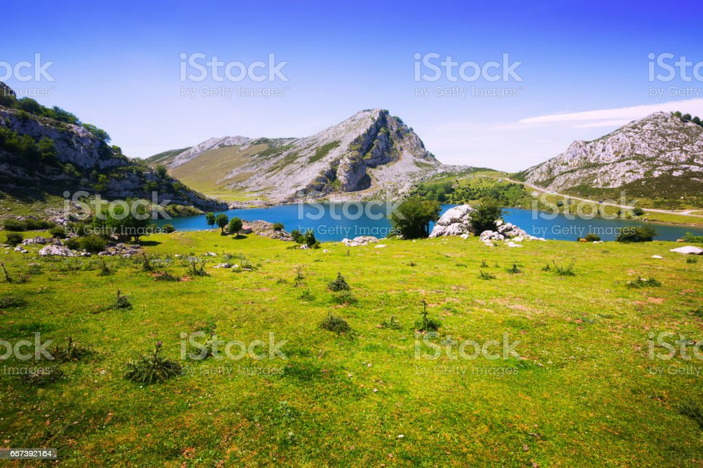 landscape with lake and pasture stock photo