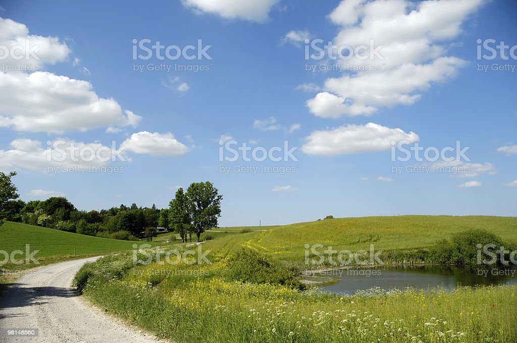 Landscape with lake and path stock photo