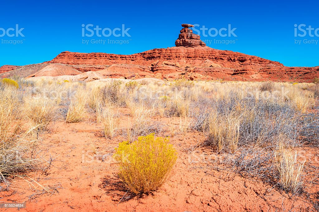Landscape with Mexican Hat in San Juan County Utah USA stock photo