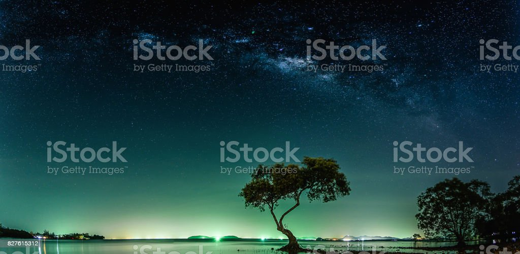 Landscape with Milky way galaxy. Night sky with stars and silhouette...