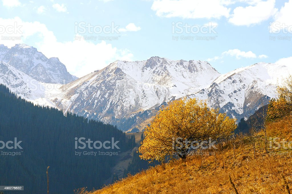 landscape with mountains stock photo