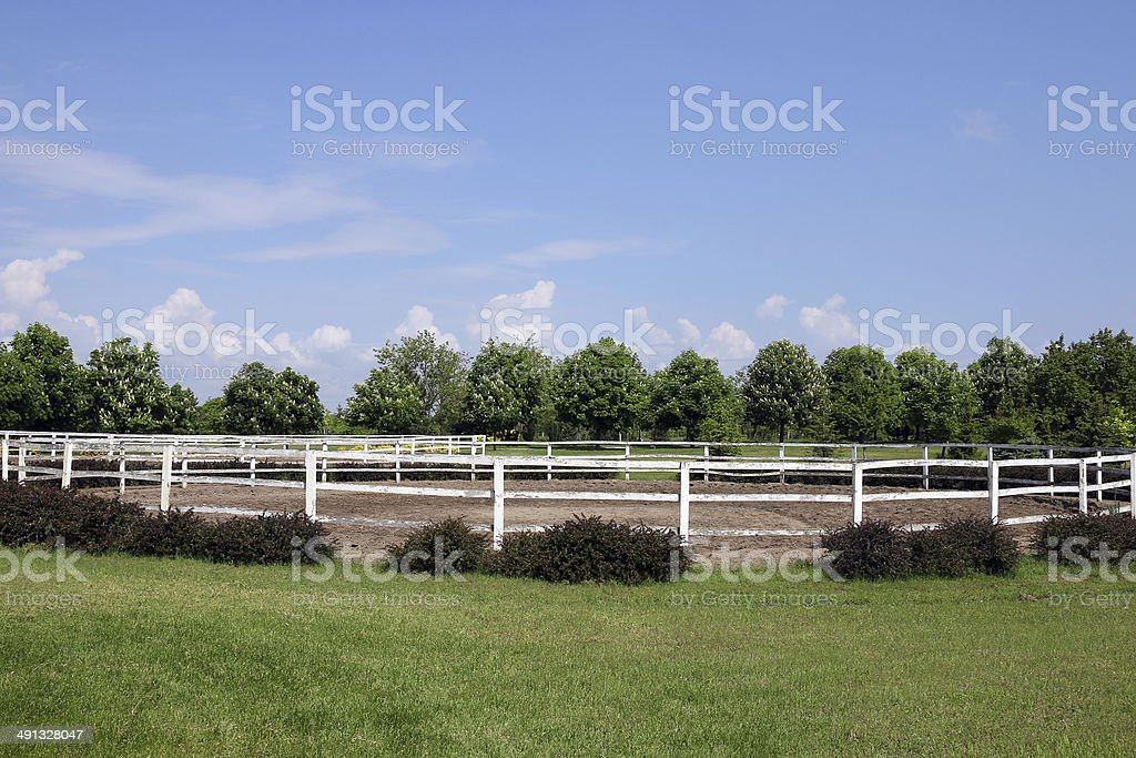 landscape with paddock trees and blue sky stock photo