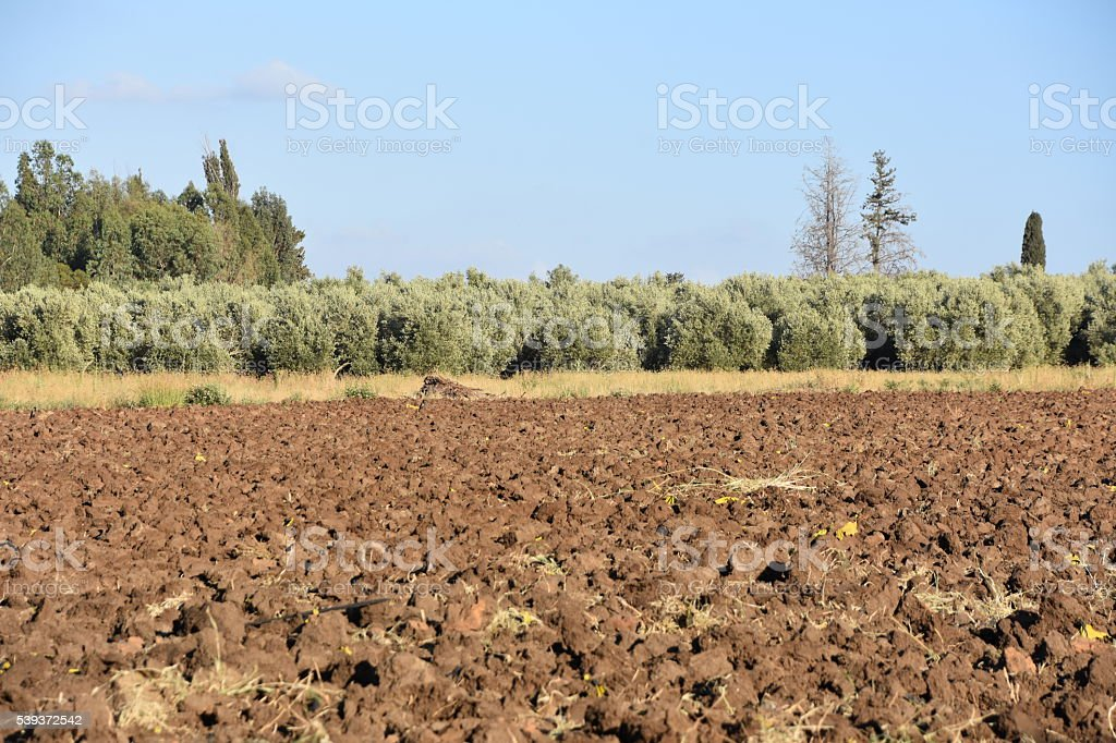 Landscape with Plowed Field stock photo