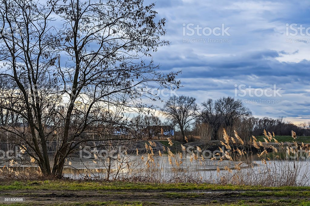 Landscape with Pond and reeds in Burgenland stock photo
