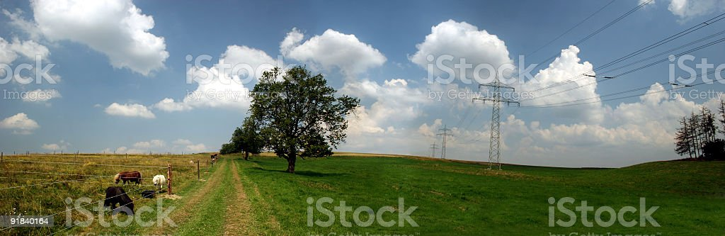 Landscape with pony paddock, footpath and power line royalty-free stock photo