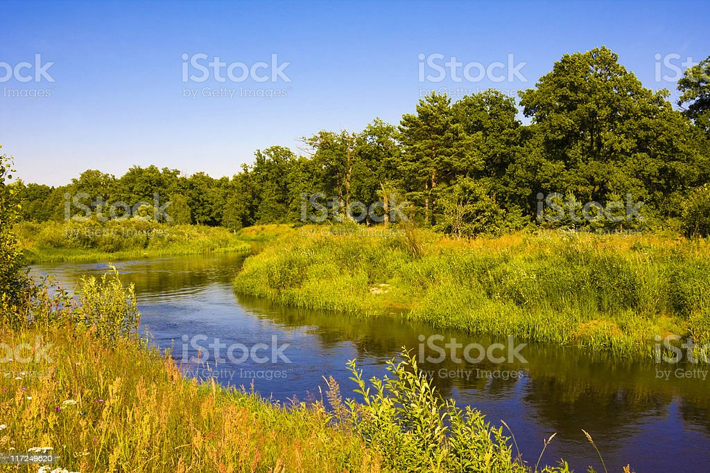 Landscape with river and forest royalty-free stock photo