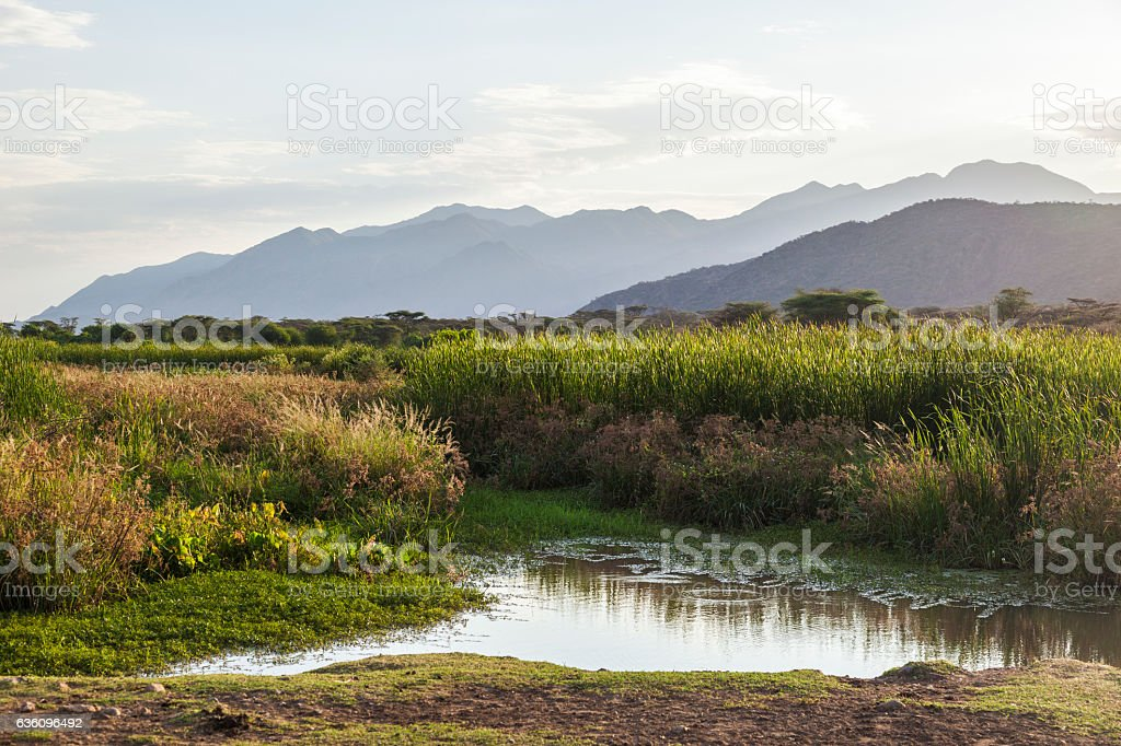 Landscape with small pond in foreground. Omo Valley. Ethiopia. stock photo