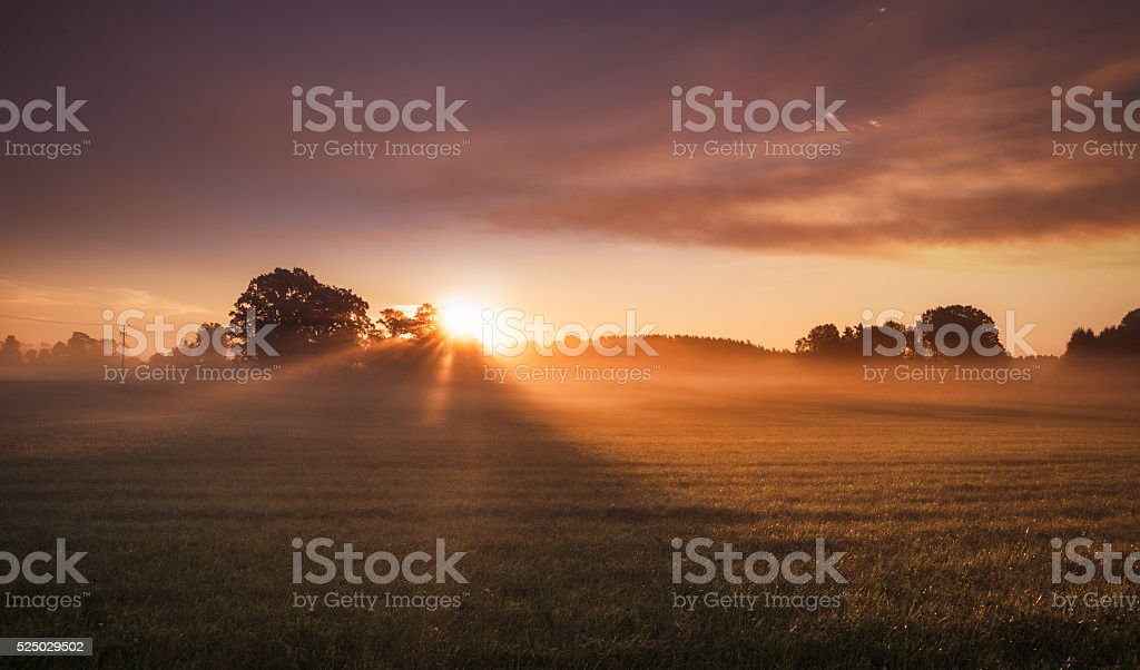 Landscape with sunrise with rays of sun and fog stock photo