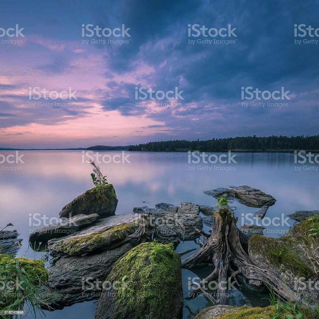 landscape with textured foreground stock photo