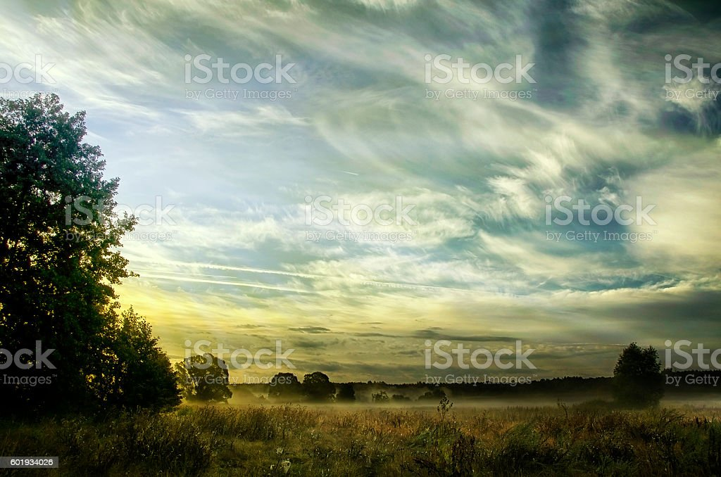 Landscape with the morning mist stock photo
