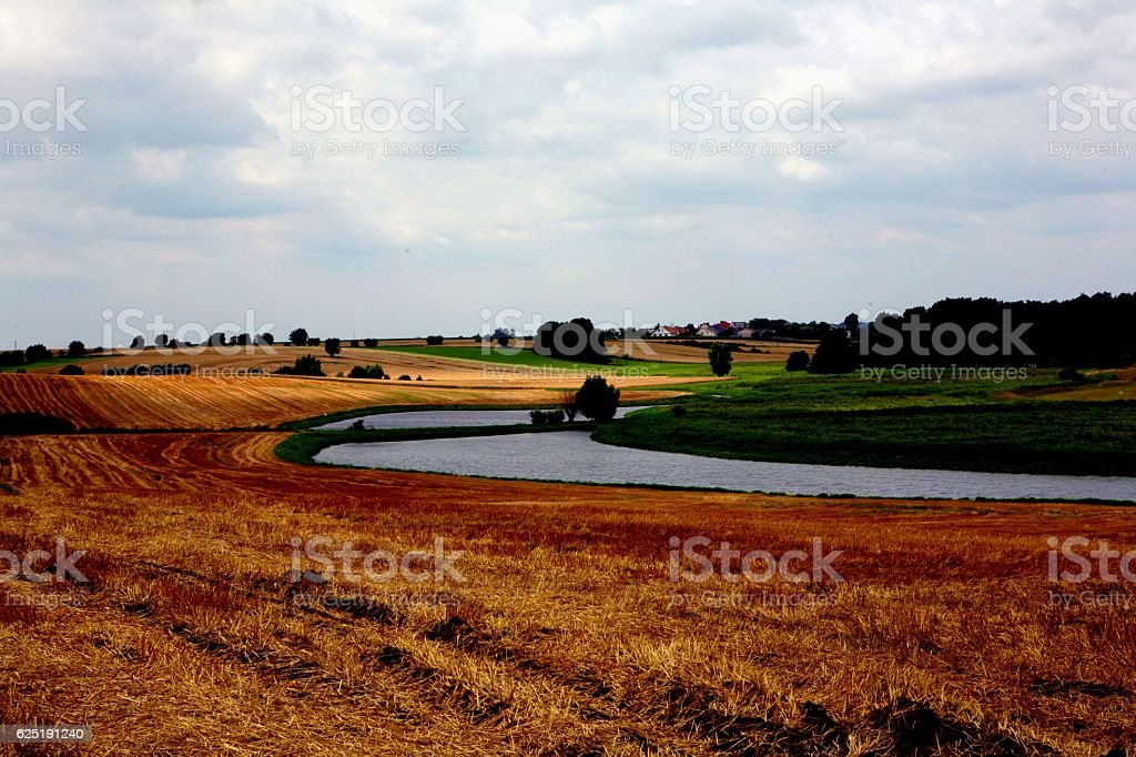 landscape with the ponds stock photo