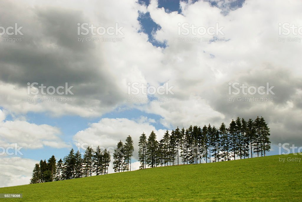 Landscape with trees and clouds royalty-free stock photo
