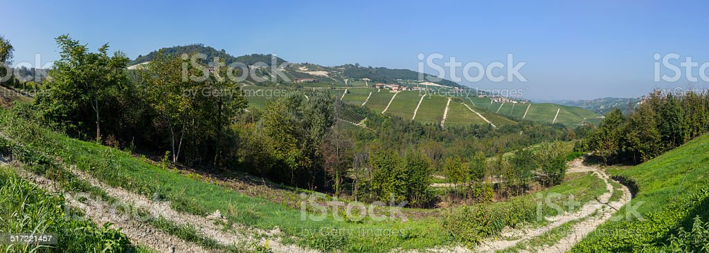 Landscape with vineyards in Langhe (Unesco World Heritage site) stock photo