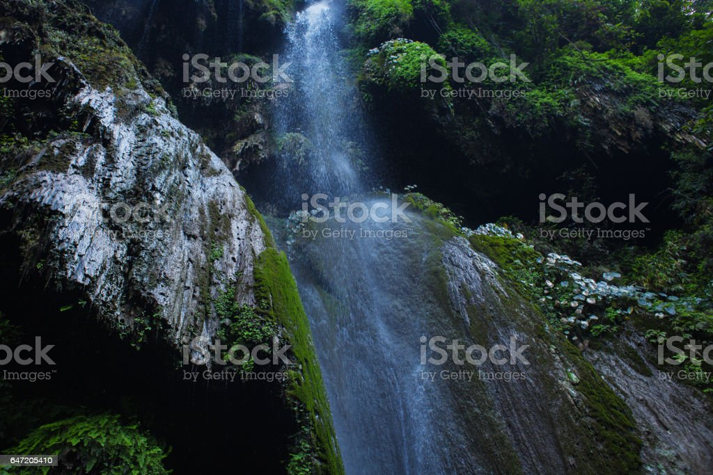 Landscape with waterfall in deep forest stock photo