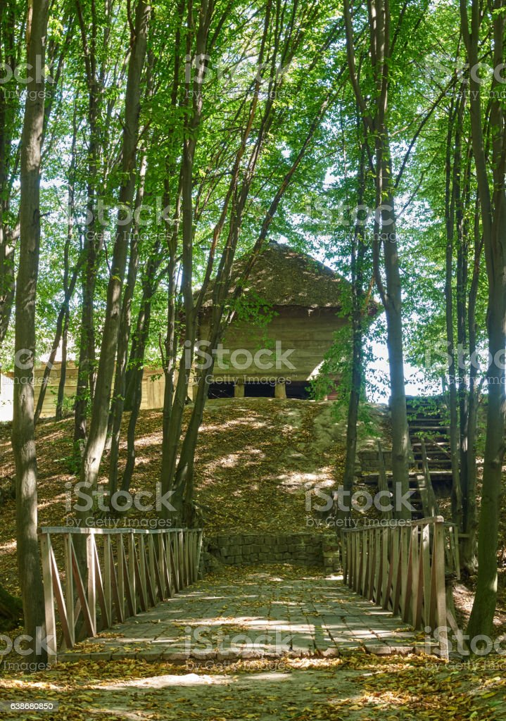 Landscape with wooden bridge across the ravine in the forest stock photo
