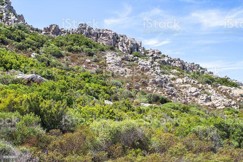 Landscape with yellow rocks on Sardinia, Italy stock photo