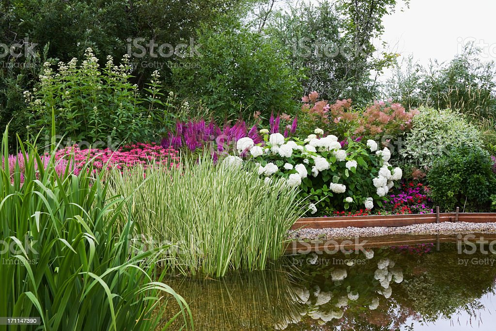 Landscaped Garden Pond stock photo