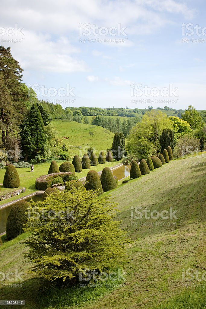 Landscaped garden with topiary stock photo