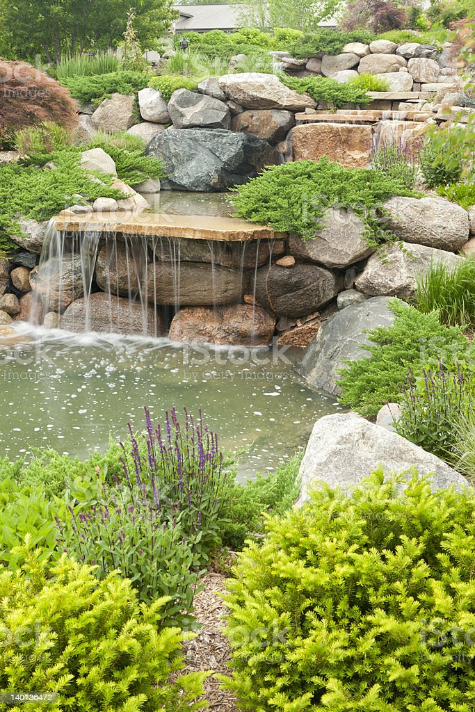 Beautifully designed and landscaped backyard waterfall and pond.