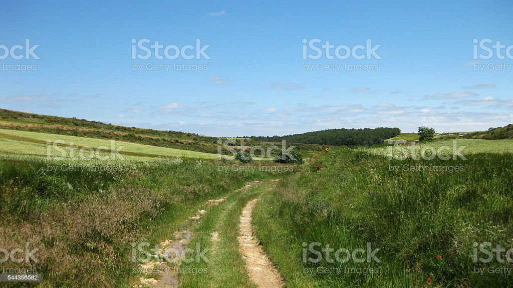 Landscapes and farmland. stock photo