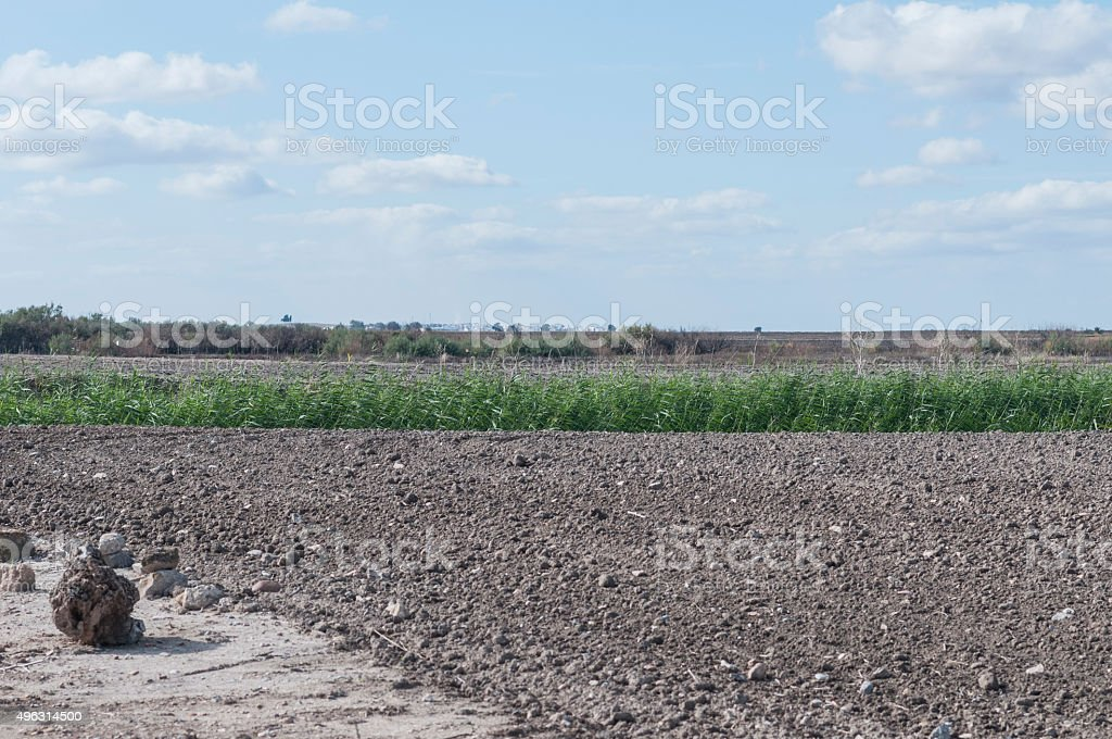 Landscapes of crops in the steppe of Andalusia stock photo