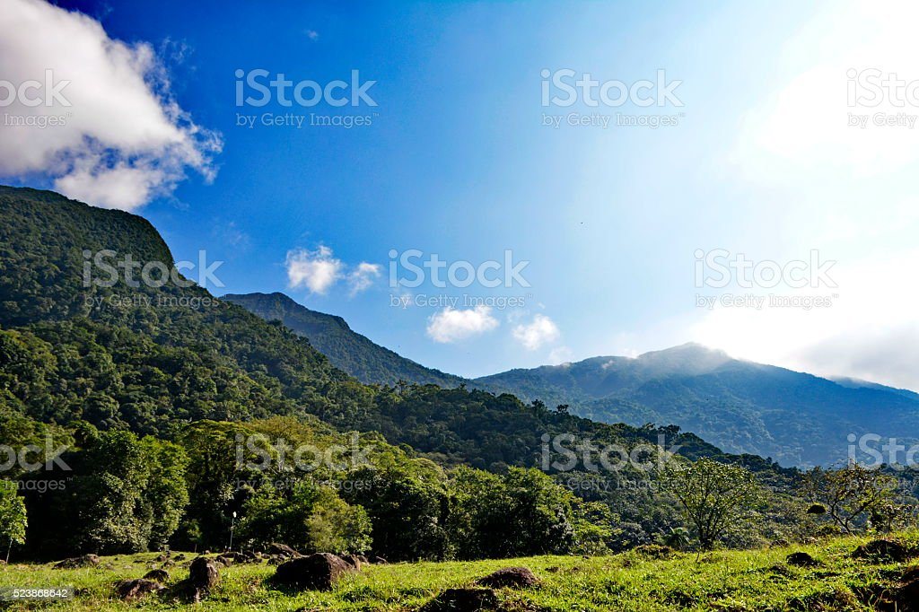 Landscapes of the Atlantic Forest stock photo