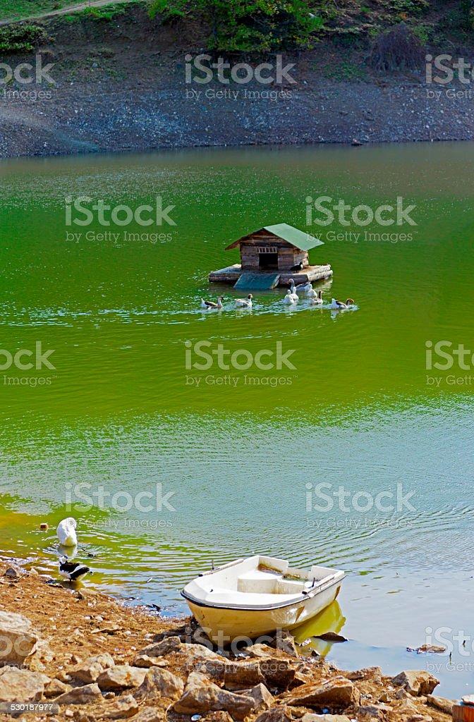 Landscapes stock photo