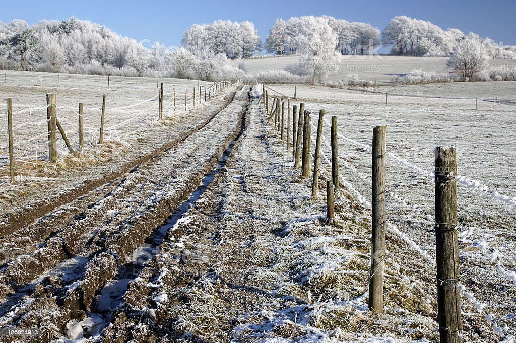 Landscapes with hoarfrost stock photo