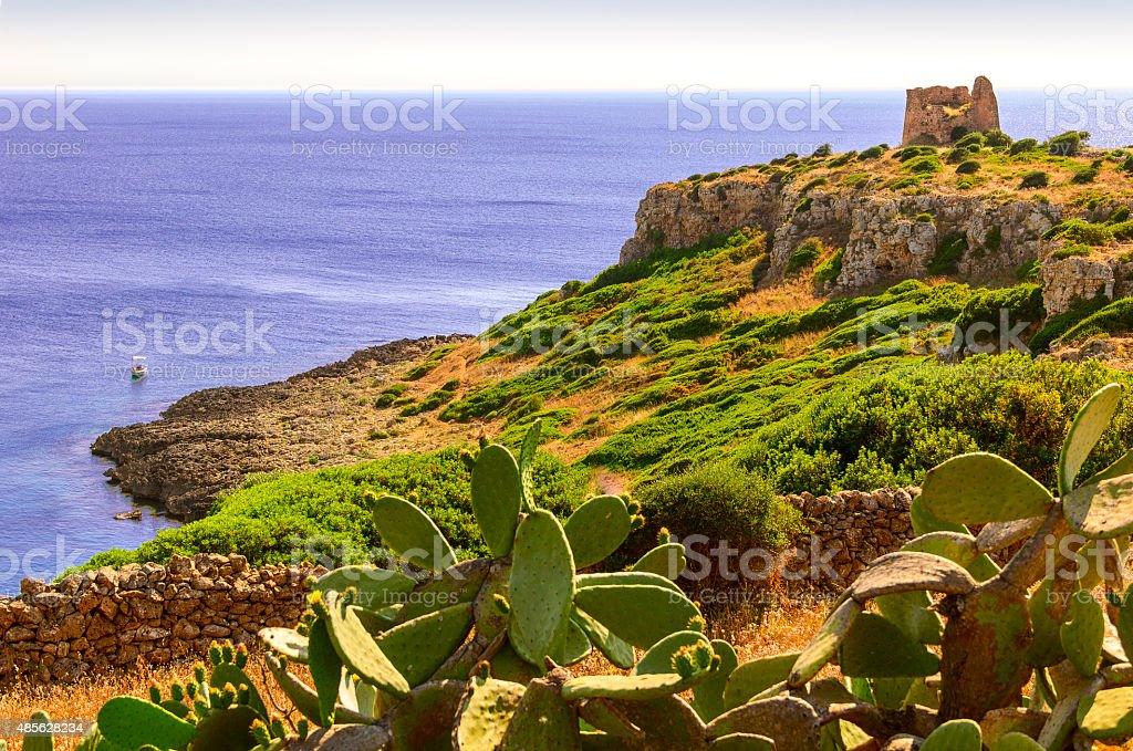 SUMMER LANDSCAPE.Salento coast:  Bay Iluzzo (Lecce). -  ITALY (Apulia) - stock photo