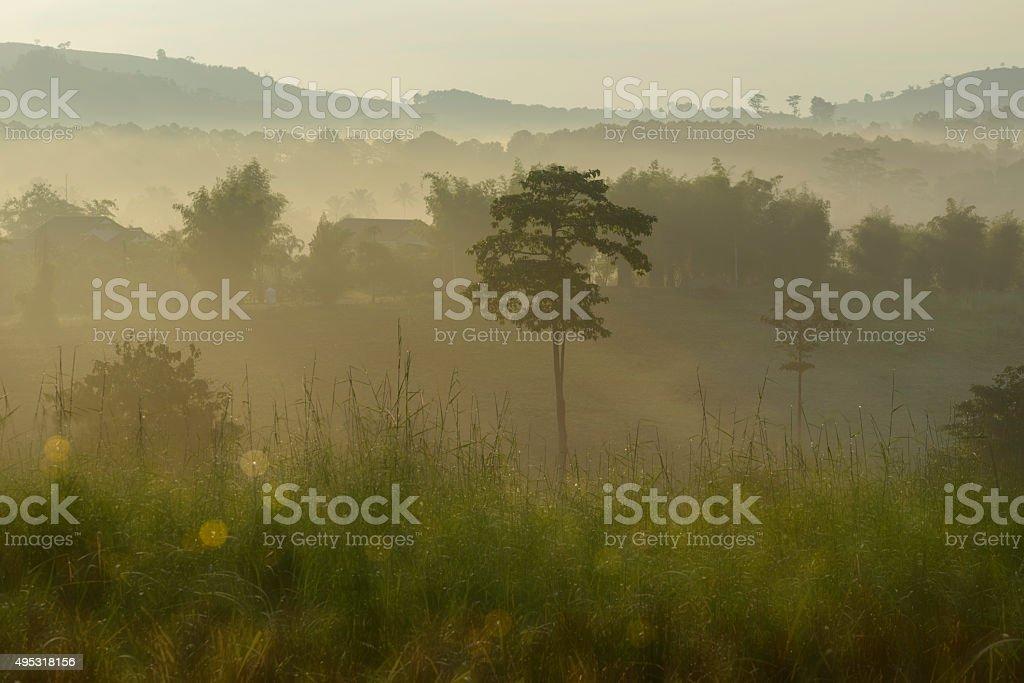 Landscape,Thailand royalty-free stock photo