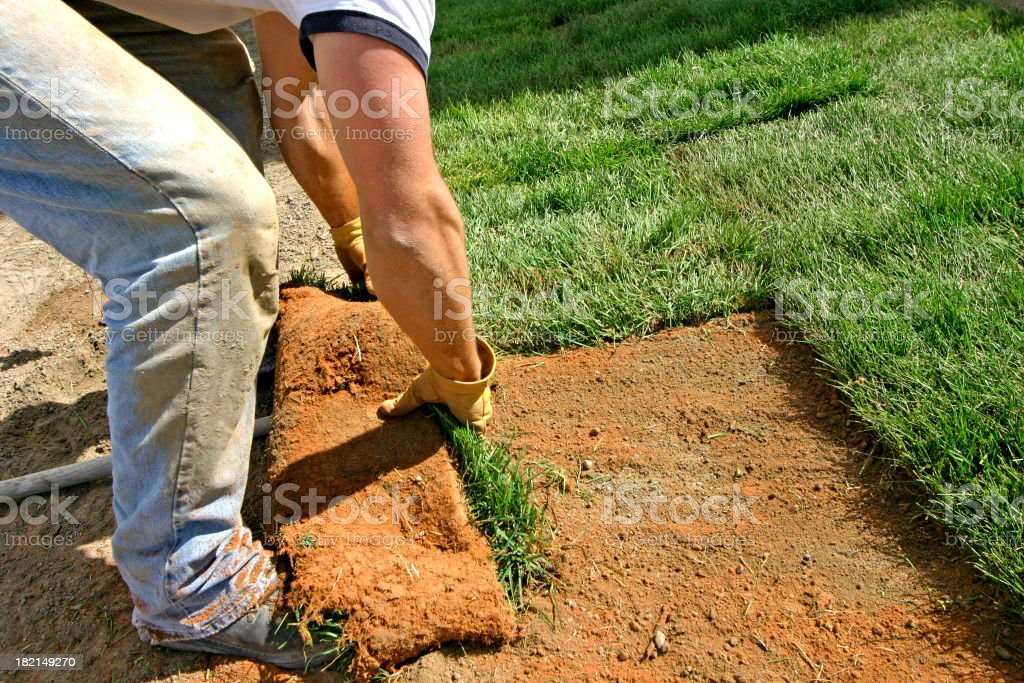 Landscaping - New Sod Grass royalty-free stock photo