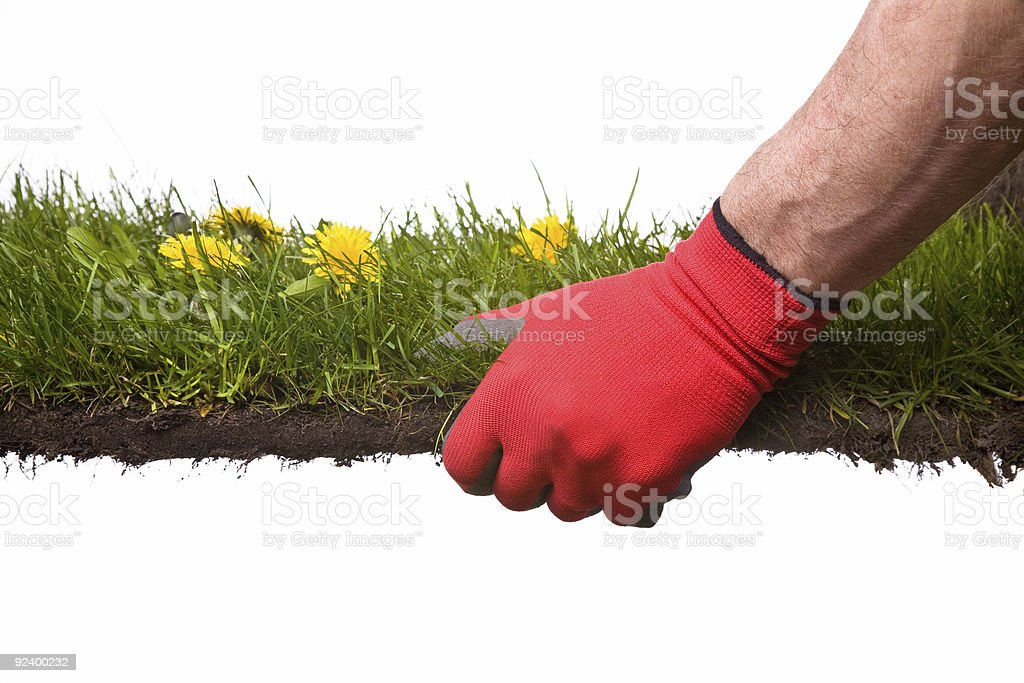 landscaping royalty-free stock photo