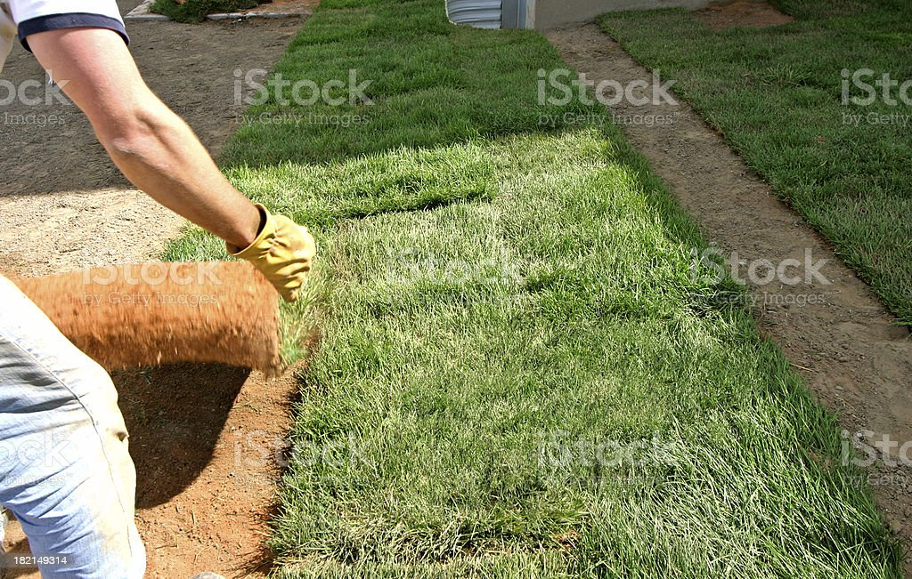 Landscaping - Sod Grass royalty-free stock photo
