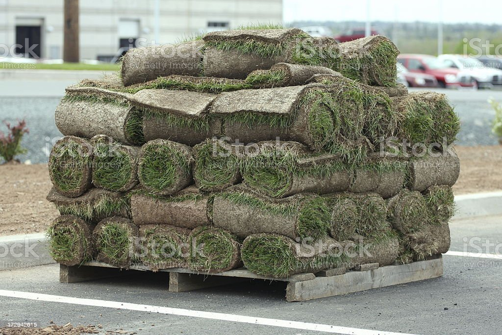 Landscaping Sod stock photo