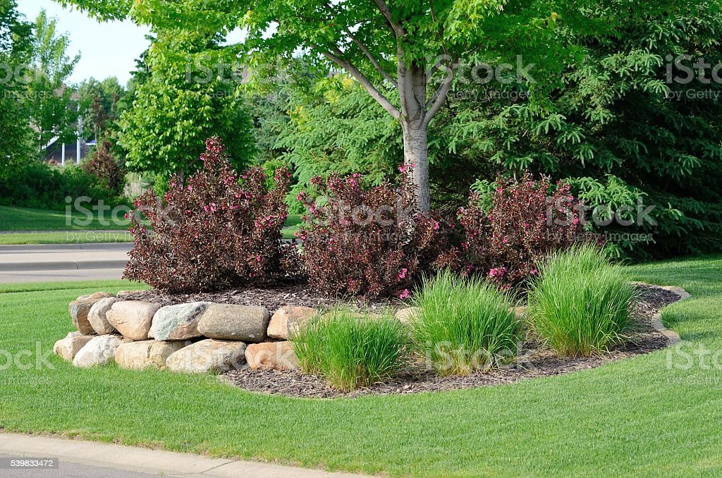 Landscaping with Weigela Shrubs and Rock Retaining Wall stock photo