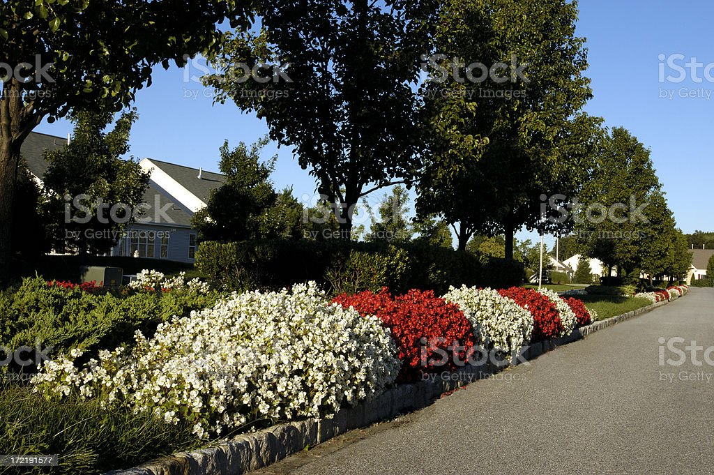 landscaping-commercial street royalty-free stock photo