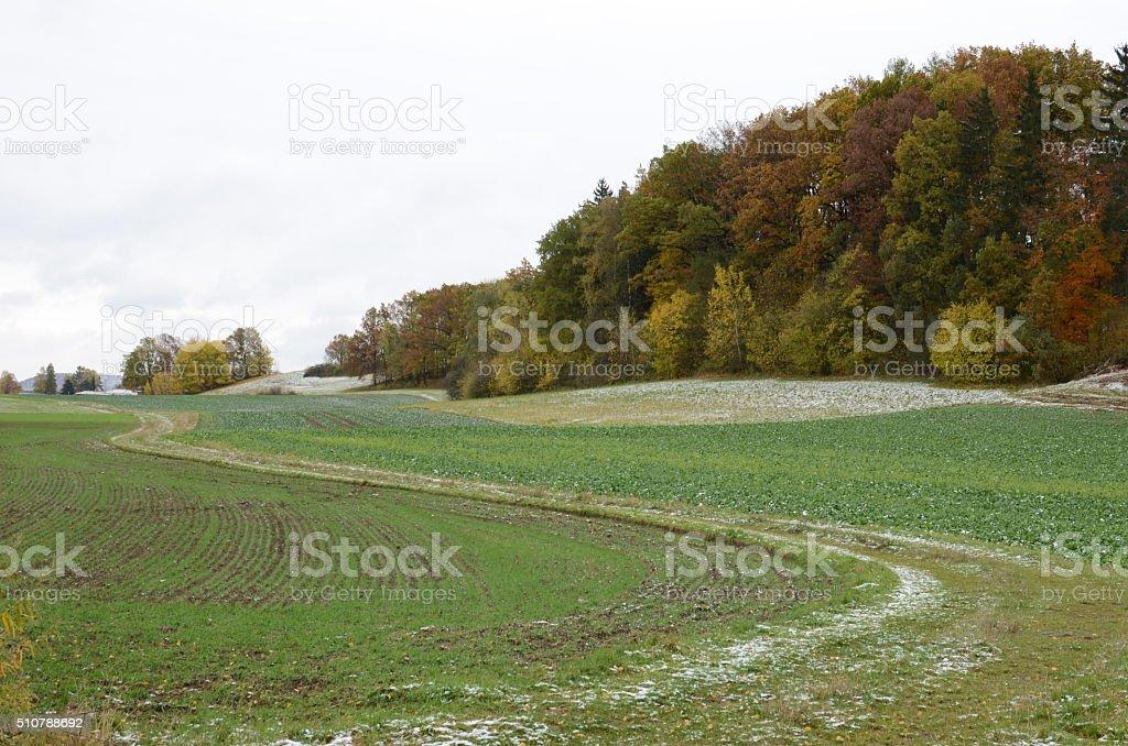 Landschaft im Herbst stock photo