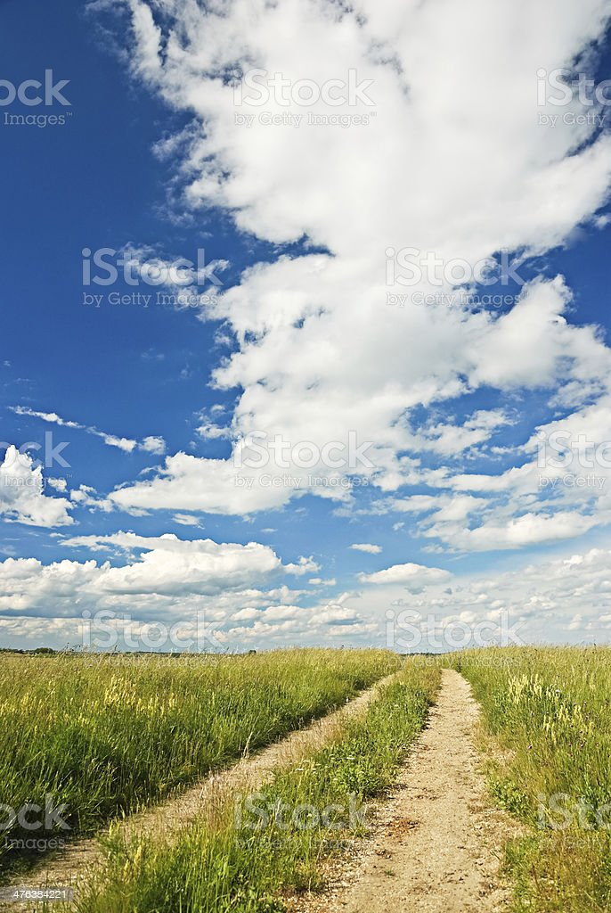 Lane along the heath royalty-free stock photo