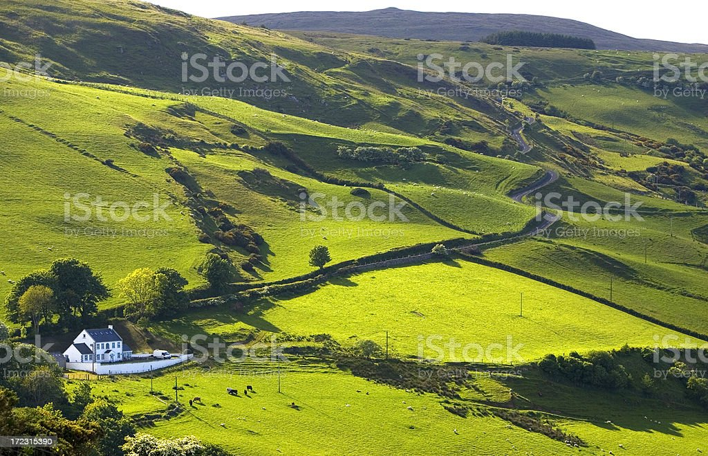 Lane in Northern Ireland countryside stock photo