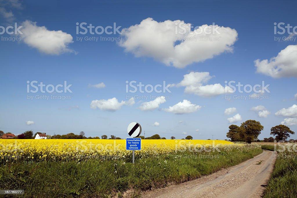 Lane in rural England royalty-free stock photo