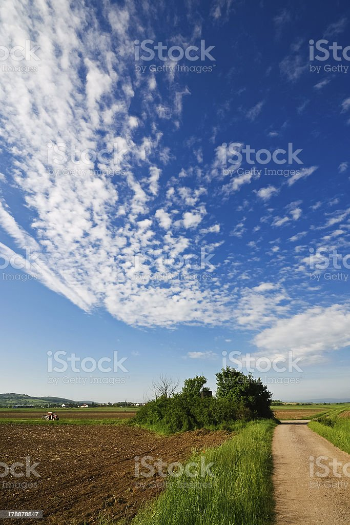 Lane on farmland with blue sky and tractor royalty-free stock photo