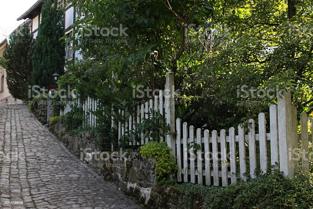 Lane with garden fence stock photo